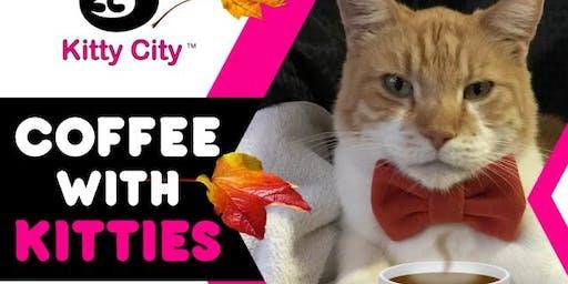 Coffee with Kitties
