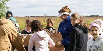 Fermilab Annual Prairie Seed Harvest
