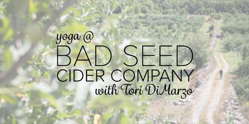 Yoga at Bad Seed Cider Company