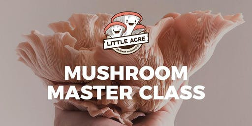 Gourmet Mushroom Cultivation Course | Brisbane (Little Acre Mushrooms)