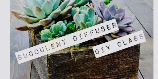Succulent Garden Workshop with Essential Oils and Crystals