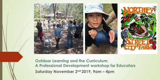 Outdoor Learning and the Curriculum: A Professional Development Workshop for Educators