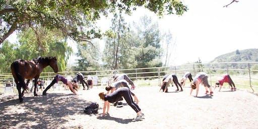Yoga + Meditation with Horses