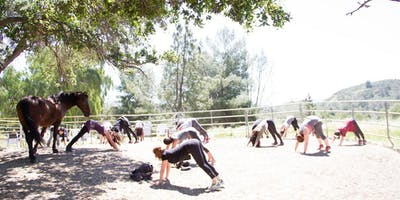 Yoga + Meditation with Horses