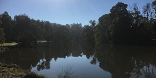 Birdsland Reserve to Lysterfield Lake 16km Hike, 22nd of Sept,  2019