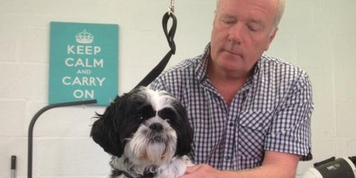 Reiki Level 1 for Dog Groomers Training Day and Qualification
