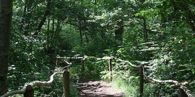 Balade contée en forêt