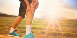 FREE Orthopaedic Shoulder and Knee Talk