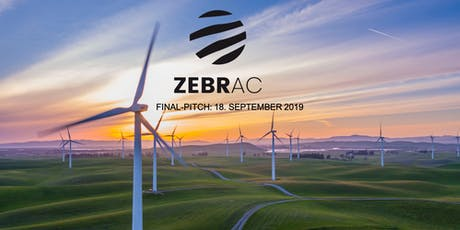 Final Pitch Event | ZEBRA Accelerator billets