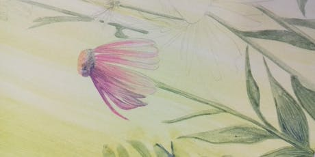 The Art of Flower Drawing tickets