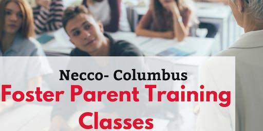 Foster Parent Training Class- Class#2: Child Protection Team