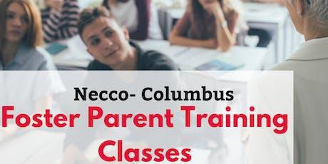 Foster Parent Training Class- Class#3: Child Development tickets