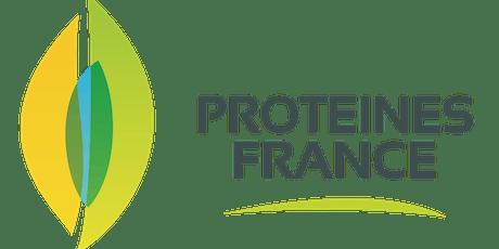 Protéines 3D billets