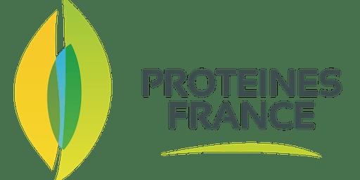 Protéines 3D