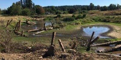 Restoration Tour--Mitchell Creek