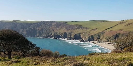 Guided Hike (Half day): South West Coast Path, Lansallos & Polruan Cornwall