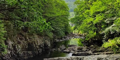 Full-day Mindful Walk in Snowdonia: Mindful Walk Betws y Coed 24 August tickets