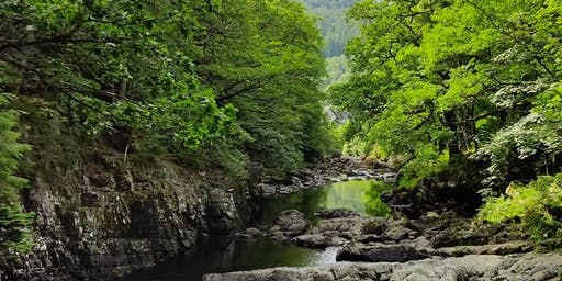 Full-day Mindful Walk in Snowdonia: Mindful Walk Betws y Coed 24 August