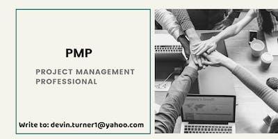 PMP Certification Classroom Training in Elko, NV