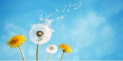 Advanced Palliative Care Study Day