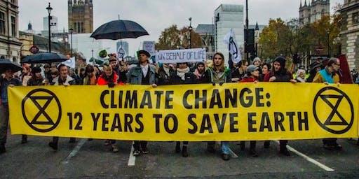 Awakening in an Age of Ecological Crisis