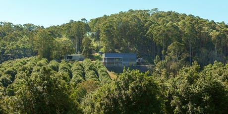 Cape Byron Distillery Tour: November - December  tickets