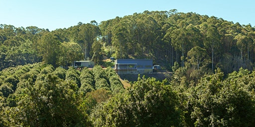 Cape Byron Distillery Tour: November - December