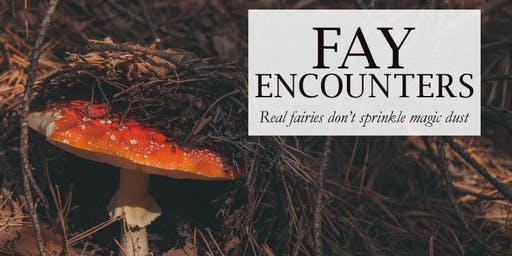 Fay Encounters: Tales of Irish Fairies (Storytelling show, 16+, English)