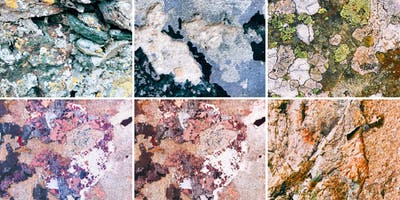Salt Stitches Texture Masterclass - NYC