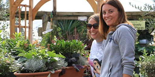 Spring Container Workshop Combing Hardy Plants and Seasonal Colour with Peter and Jacky Richardson