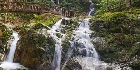 Templer Park: Half-Day Tour from Kuala Lumpur tickets