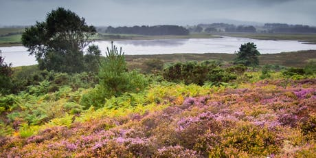 LANDSCAPES FOR LIFE FESTIVAL Explore the Heathland tickets