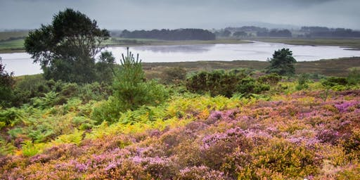 LANDSCAPES FOR LIFE FESTIVAL Explore the Heathland