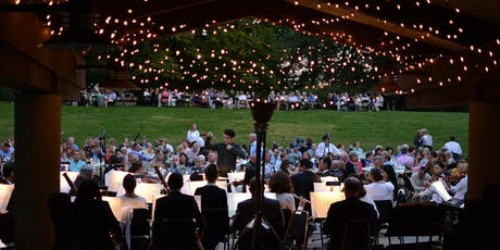 IJAMS Volunteering: Symphony in the Park SET UP tickets