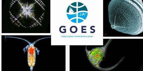 Introducing GOES tickets