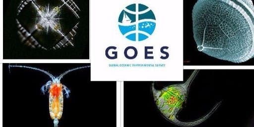 Introducing GOES