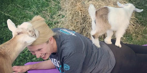 Feels Like OM Baby Goat Yoga