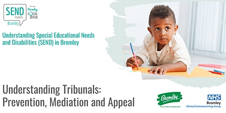 Understanding Tribunals: Prevention, Mediation and Appeal tickets