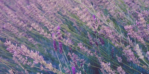 Creating a healthy and happy home with essential oils