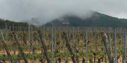 Gesloten ivm bezoek wijnleveranciers