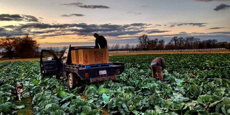 Food Safety: Best Practices for a Clean and Successful Harvest tickets
