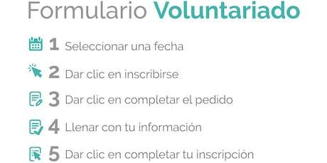 Voluntariado Holcim: Manuel de Jesús entradas