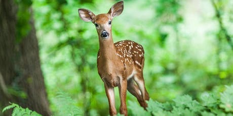 Brunch on the Bluff: The Origin and Spread of Chronic Wasting Disease tickets