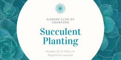 Succulent Planting with the Garden Club of Cranford, ages 4+
