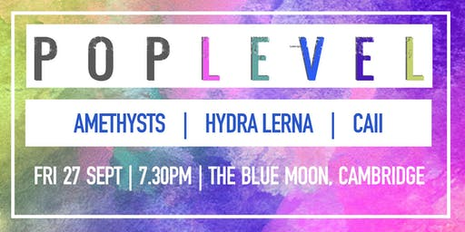 POP LEVEL:  Hydra Lerna / Amethysts / Caii