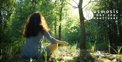 Forest Bathing - Spa Meditation Retreat