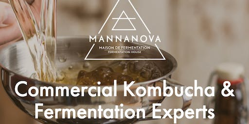 From the Basement to the Brewery: Scaling Up Your Kombucha Production