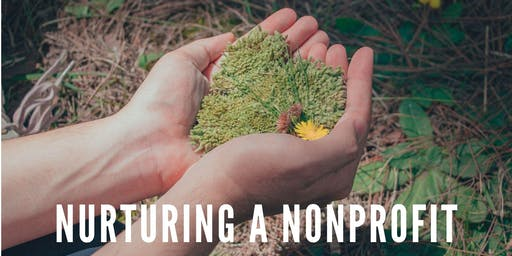Nurturing a Nonprofit: Launching and Sustaining Effectively