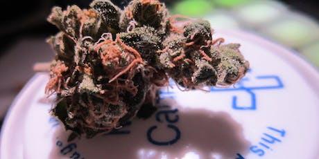 Illinois Medical Marijuana Dispensary Training - Chicago area - September 21st tickets