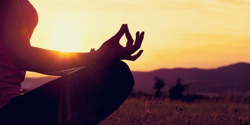 A Morning of Mindfulness: Cultivating Presence and Ease
